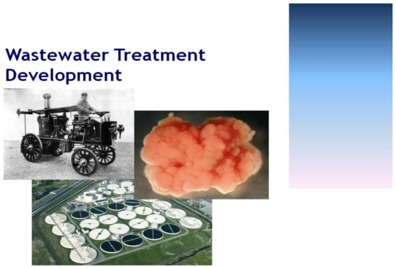 Course: Biological Wastewater Treatment: Principles